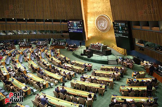 الرئيس السيسى بالامم المتحدة (1)
