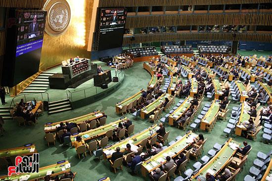 الرئيس السيسى بالامم المتحدة (9)