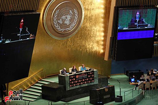 الرئيس عبد الفتاح السيسى لحضور قمه نيسلون مانديلا  (17)
