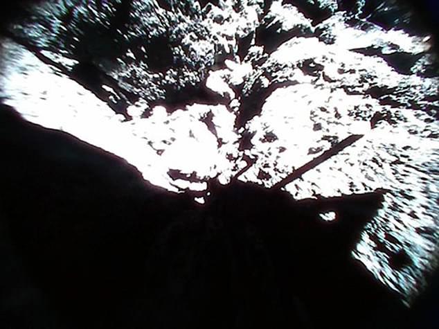 الكويكب ريجو