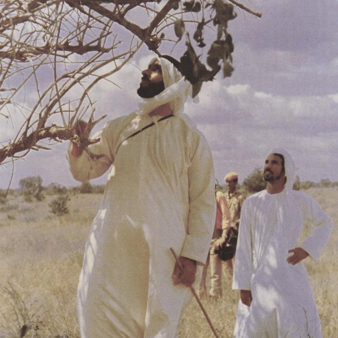 الشيخ زايد يتفقد أحد أنواع الأشجار فى السودان
