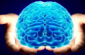 علاجات ضمور المخ