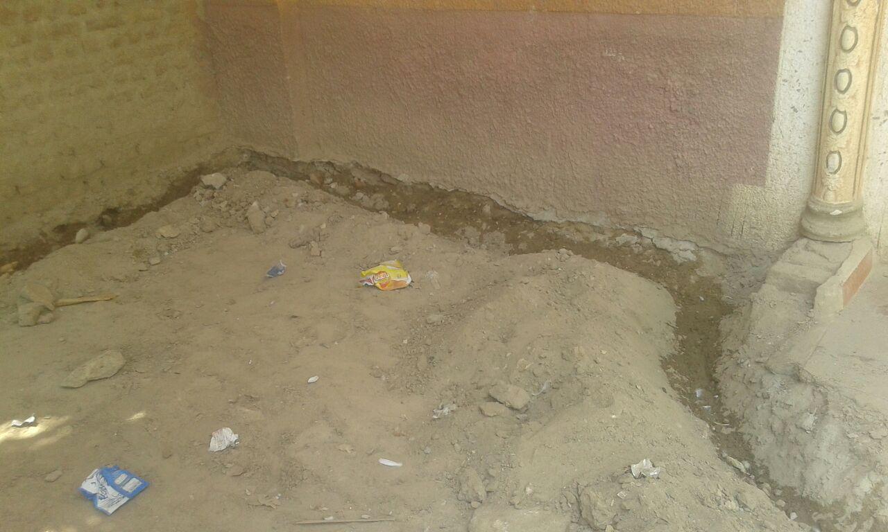علاج 80 وحدة مصابة بالنمل الابيض فى محافظة اسوان (5)