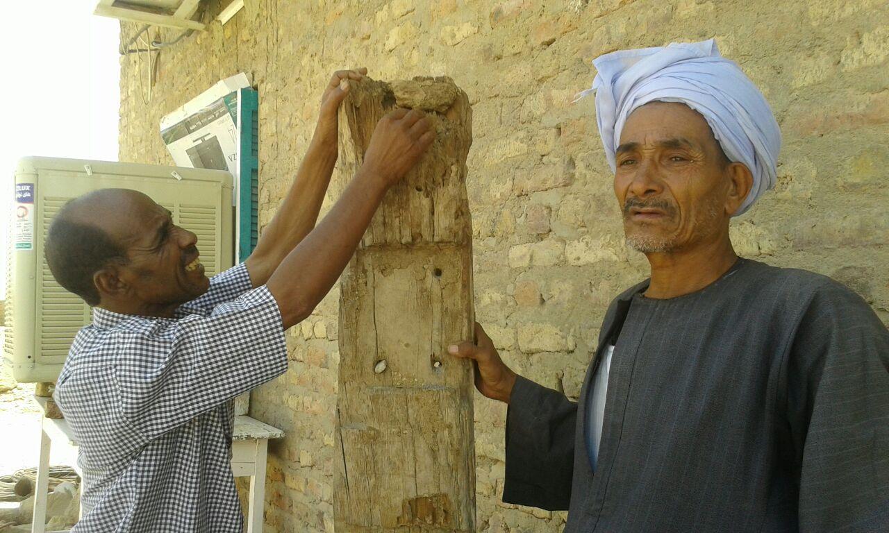 علاج 80 وحدة مصابة بالنمل الابيض فى محافظة اسوان (2)