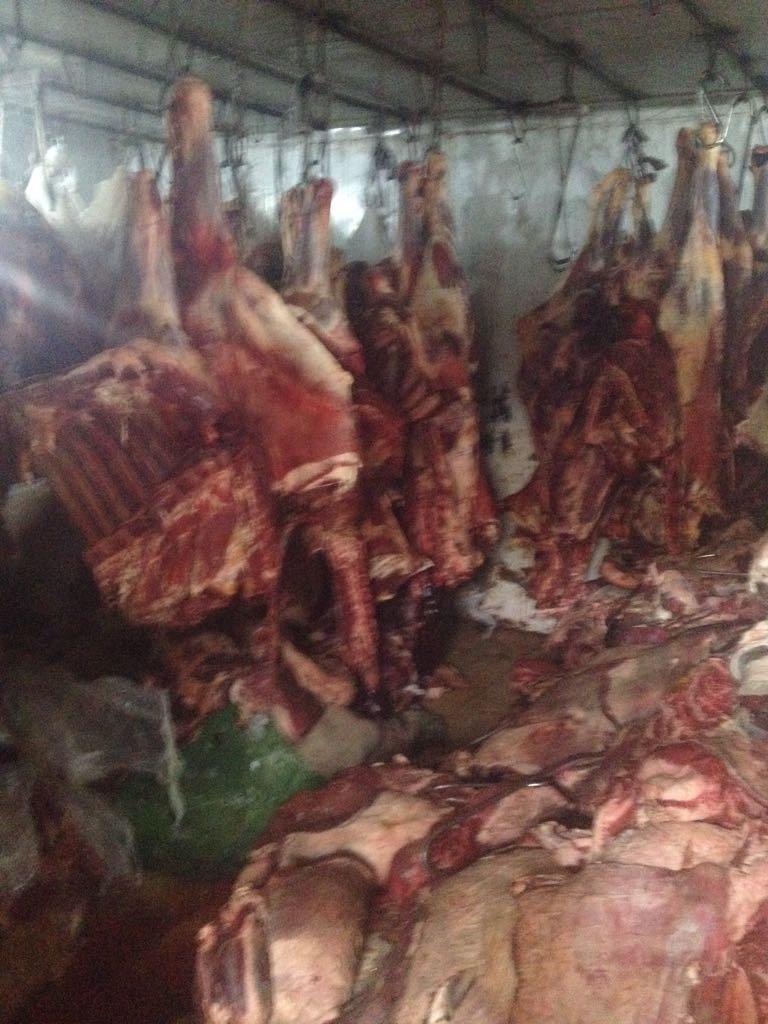 الزراعة تواصل حرب اللحوم الفاسدة (9)