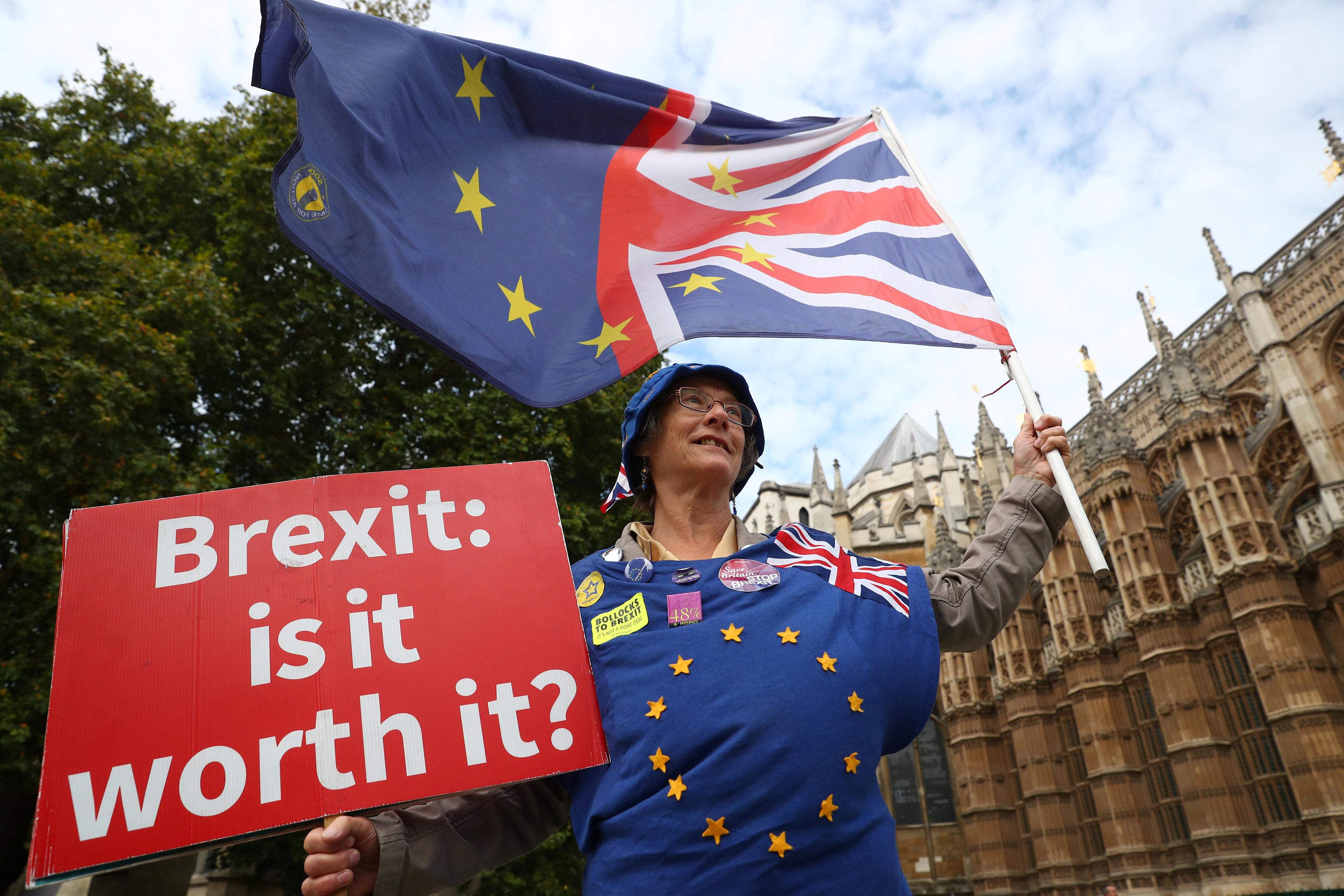 متظاهرة تلوح بعلم مقسوم بين بريطانيا والاتحاد الأوروبى