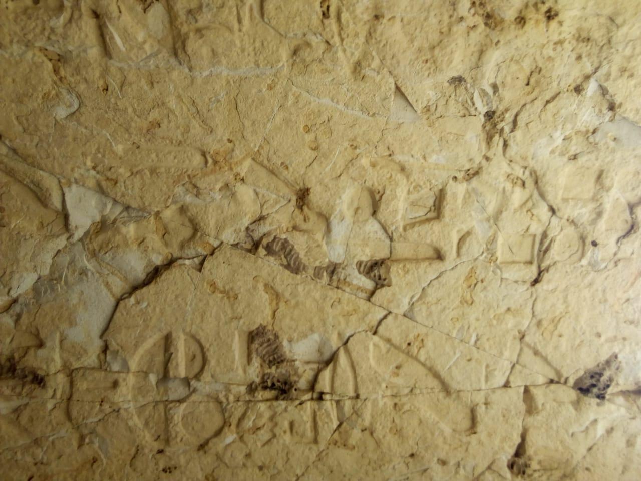 المقبرة المكتشفة (3)