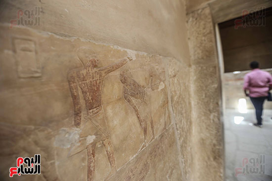 افتتاح مقبرة ميحو (15)