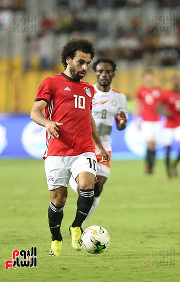 مصر والنيجر (15)
