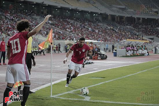 صور مصر والنيجر (4)