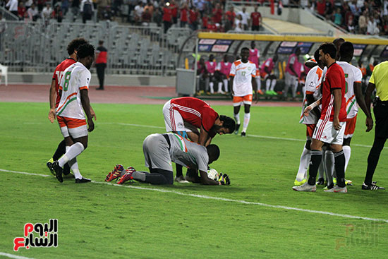 مصر والنيجر (19)