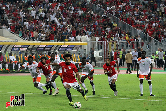 مصر والنيجر (21)
