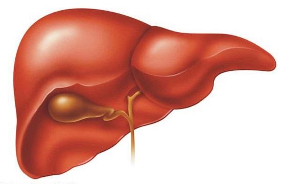 اعراض تليف الكبد 5