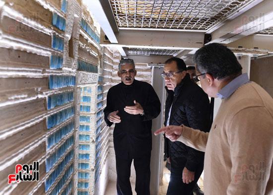 رئيس الوزراء يتفقد مشروعات الترميم بمنطقة آثار سقارة  (18)