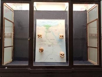 15 جمجمة جديدة بالمتحف المصرى (10)