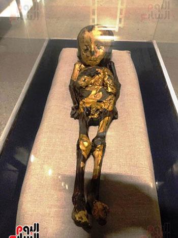 إعادة اكتشاف الموتى بالمتحف المصرى (28)