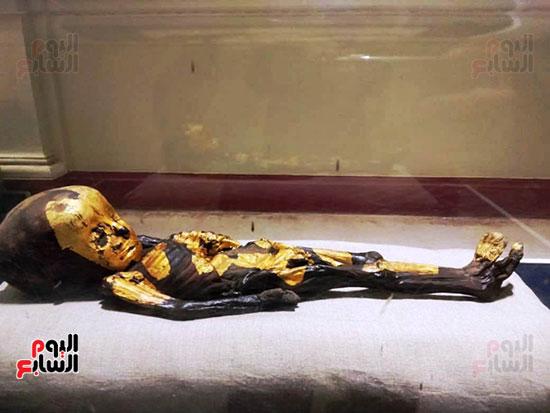 إعادة اكتشاف الموتى بالمتحف المصرى (29)