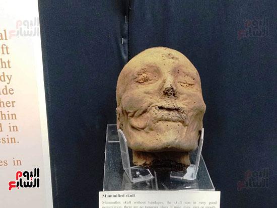 إعادة اكتشاف الموتى بالمتحف المصرى (31)