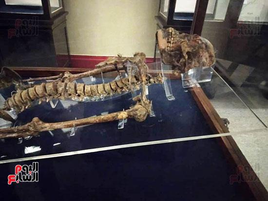 إعادة اكتشاف الموتى بالمتحف المصرى (19)