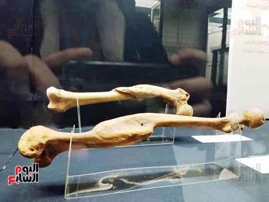إعادة اكتشاف الموتى بالمتحف المصرى (24)