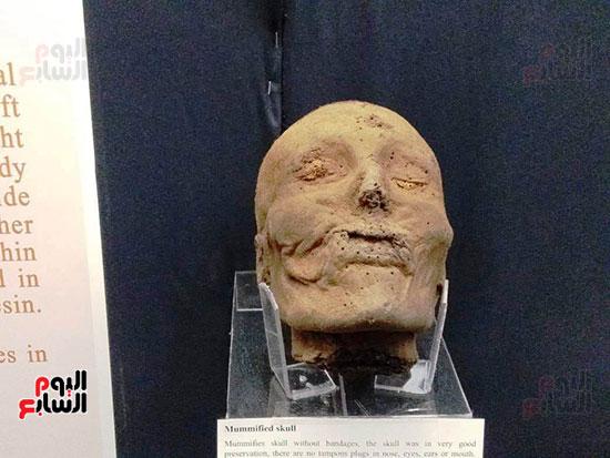 إعادة اكتشاف الموتى بالمتحف المصرى (10)
