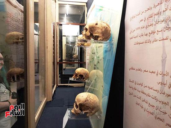 إعادة اكتشاف الموتى بالمتحف المصرى (16)