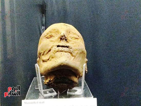 إعادة اكتشاف الموتى بالمتحف المصرى (20)