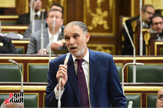 الجلسة العامة  (2)