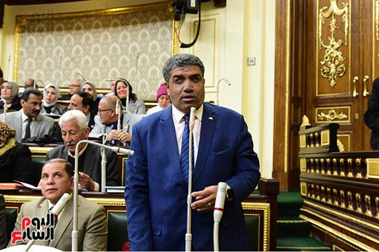 الجلسة العامة  (15)