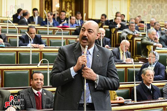 الجلسة العامة  (4)