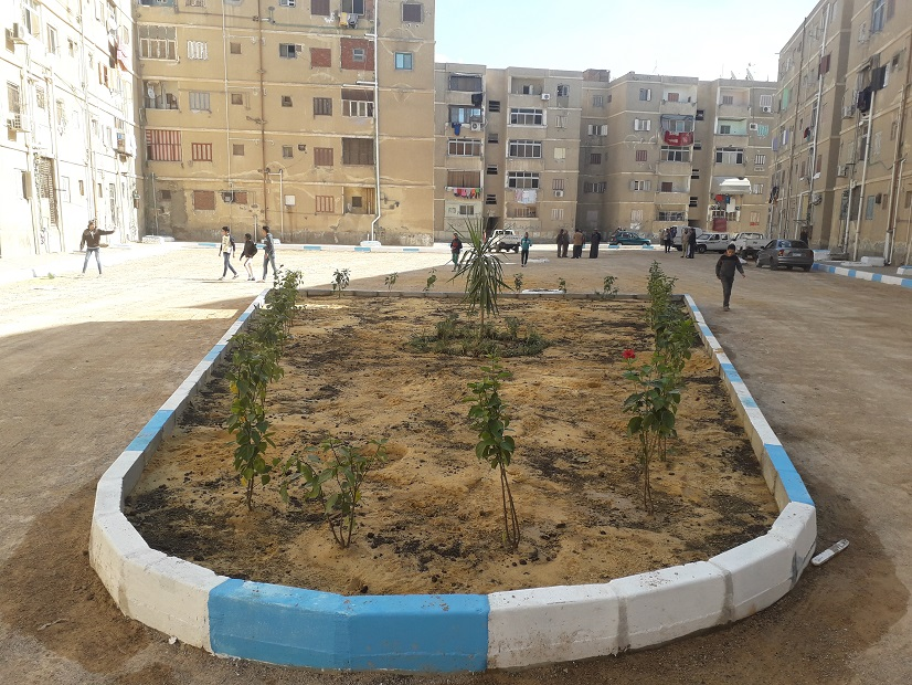 استكمال تطوير مدينة تعاونيات القاهرة بمحافظة السويس (4)