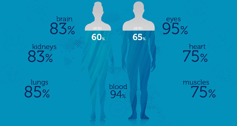 اعرف جسمك كم تشكل نسبة المياه فى جسم الإنسان وما وظيفتها اليوم السابع