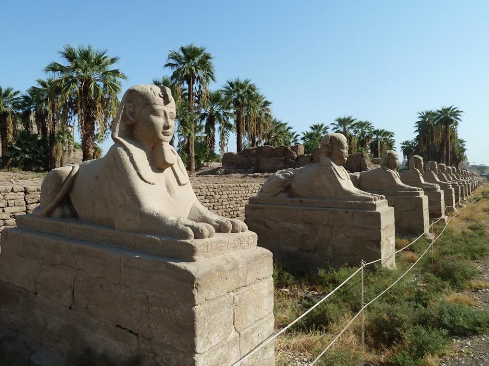 هل يشهد عام 2019 إنتهاء العمل وإفتتاح مشروع طريق الكباش الفرعوني (9)
