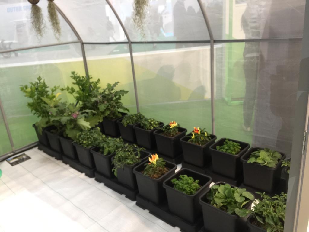 منتجات زراعية وغذائية صديقة للبيئة (1)