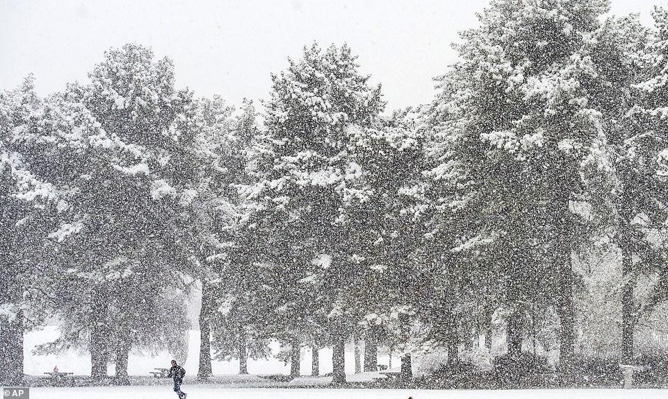 الثلوج تغطى الطرق شرق الولايات المتحدة (3)