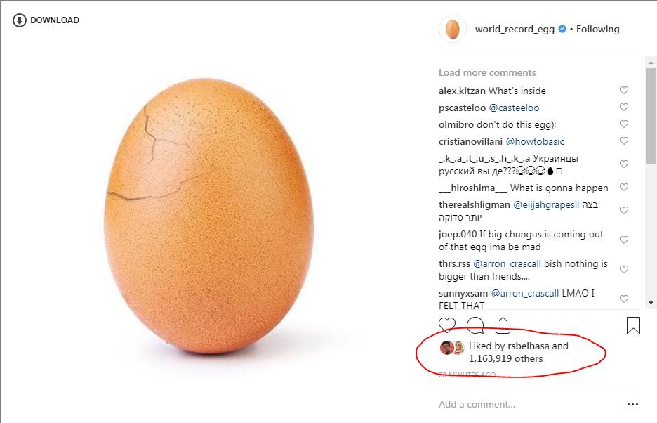 بيضة انستجرام
