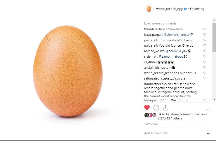 البيضة تبدأ فى التشقق