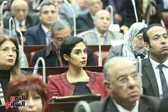 لجنة التضامن الاجتماعى بمجلس النواب (15)