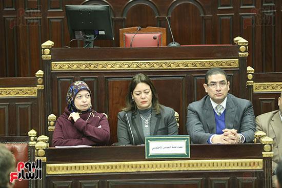 لجنة التضامن الاجتماعى بمجلس النواب (12)