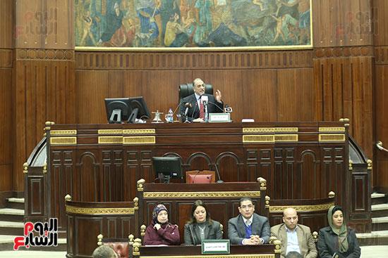 لجنة التضامن الاجتماعى بمجلس النواب (11)