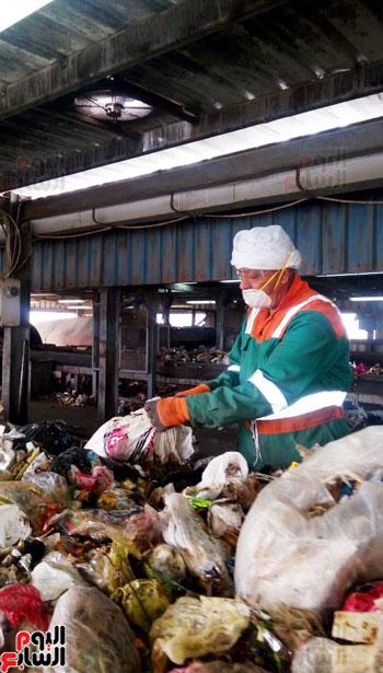 القمامة تتحول من أزمة إلى صناعة مربحة  (1)