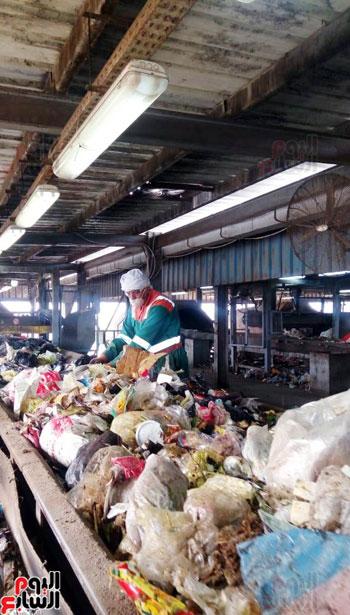 القمامة تتحول من أزمة إلى صناعة مربحة  (2)
