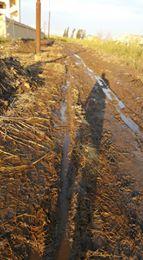 طريق بطين