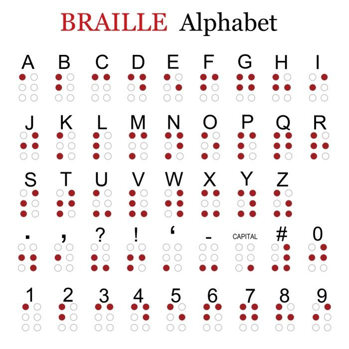 Braille-characters-are-small-rectangular-blocks-called-cells-that-contain-tiny-palpable-bumps-called-raised-dots