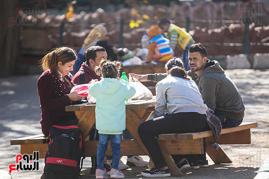 أجواء الاحتفال بأعياد الميلاد من داخل الحديقة الدولية (2)