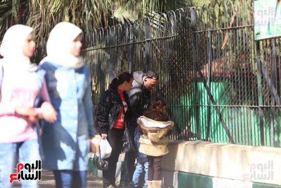 حديقة الحيوان (8)