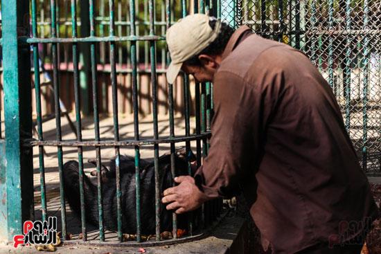 حديقة الحيوان (5)