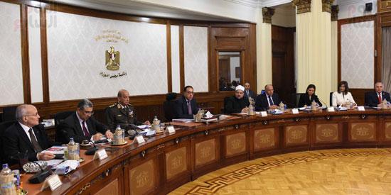 مجلس الوزراء (17)