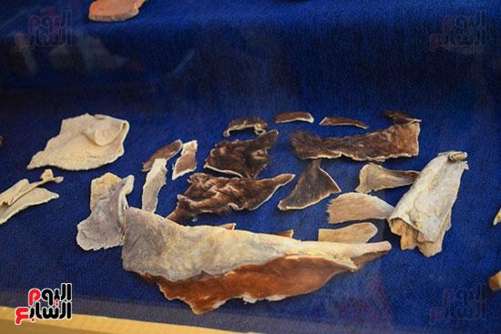 مقتنيات-وكنوز-إكتشفها-العالم-الشهير-زاهي-حواس-للبعثة-المصرية-بوادي-الملوك-ووادي-القرود-(19)