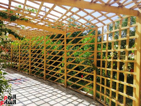 حدائق-خضراء-وفصول-مزينة-بالألوان-بفضل-مجلس-الامناء-بالفيوم-(7)
